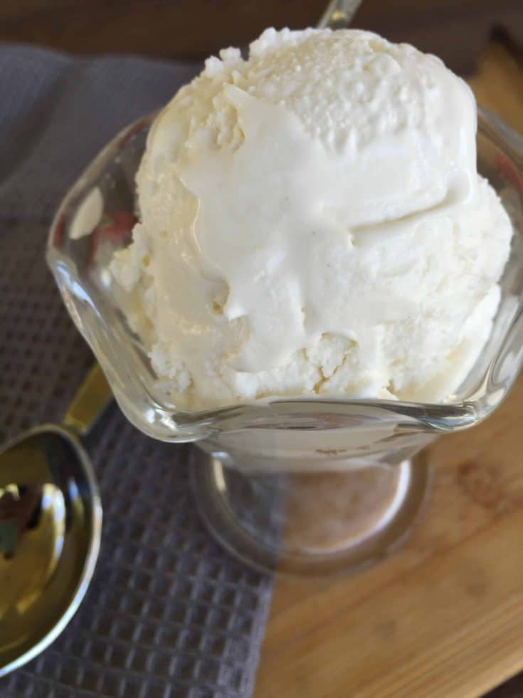 Low Carb, Sugar Free Vanilla Ice Cream