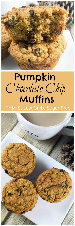 Pumpkin Chocolate Chip Muffins - My ...