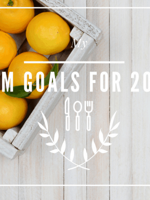 My THM Goals for 2017