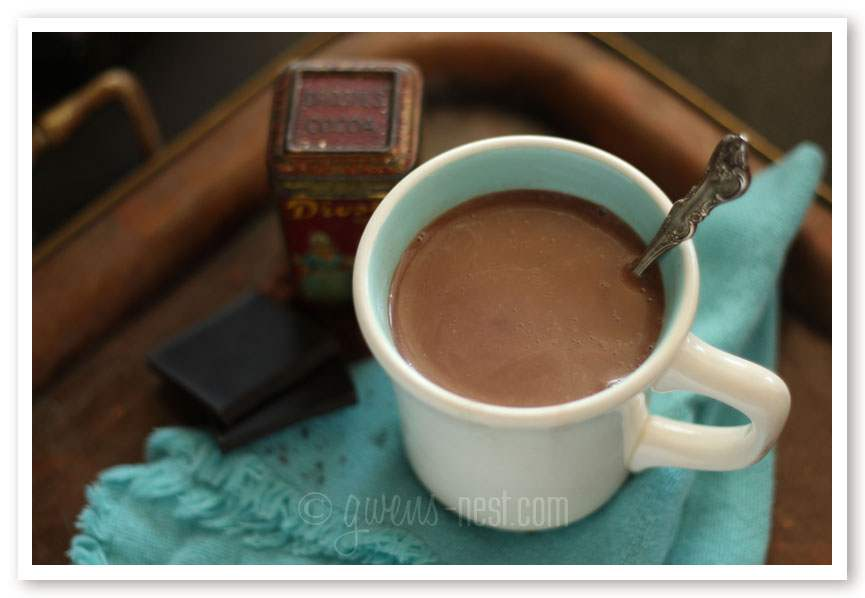 Sugar Free Hot Chocolate (THM-S, Low Carb)