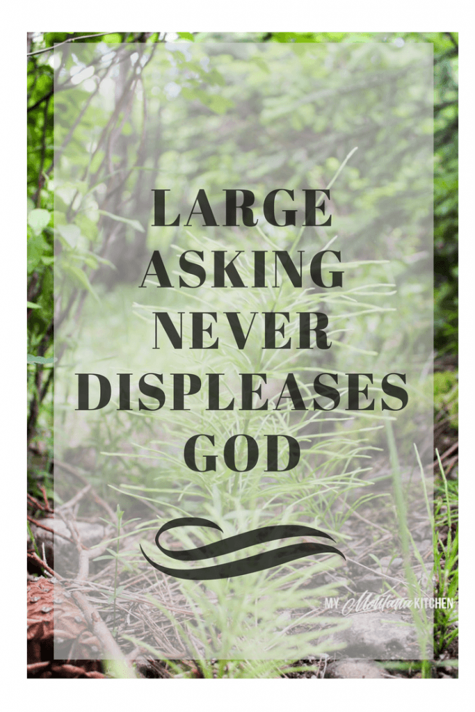 Why Large Asking Never Displeases God