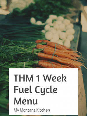 THM Fuel Cycle Challenge and Menu