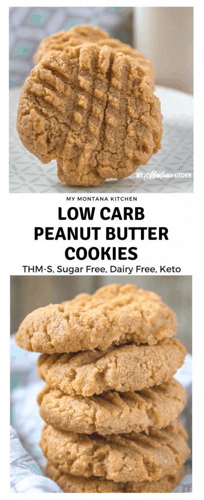 Low Carb Peanut Butter Cookies (Dairy Free, Sugar Free, THM-S) #trimhealthymama #thm #thms #lowcarb #keto #sugarfree #dairyfree #glutenfree #peanutbutter #cookies #peanutbuttercookie #thmcookie #ketocookie