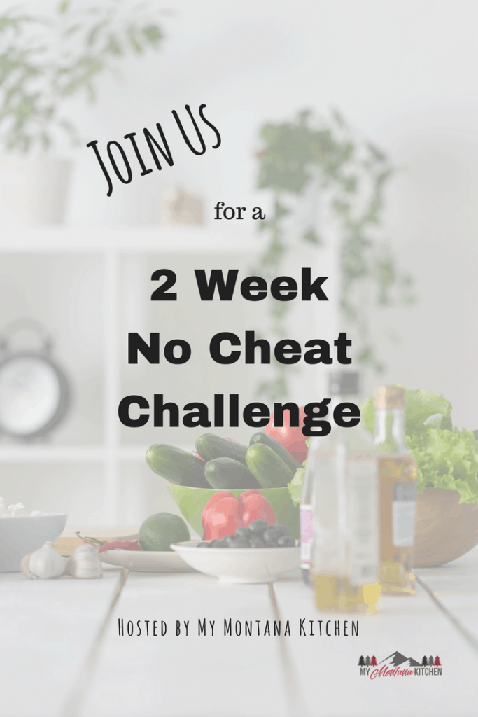 If you are struggling to stay on the Trim Healthy Mama Plan, or if you just need a little boost, this 2 Week Challenge will be perfect for you! #trimhealthymama #thm #challenge #help #stayingonplan #thmtips