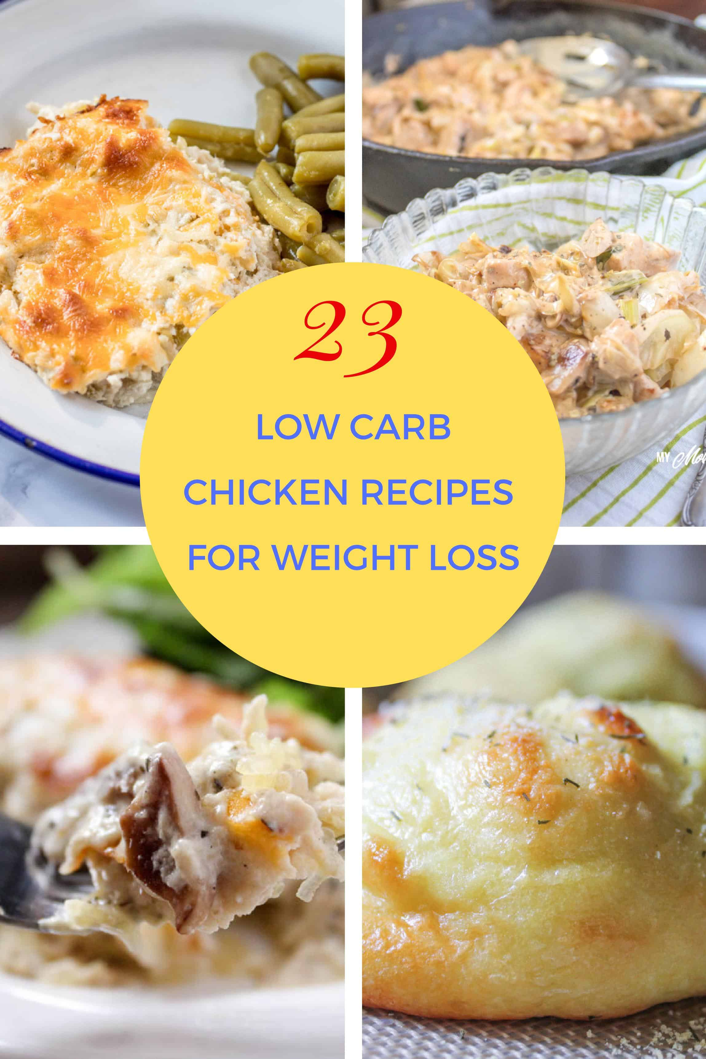 23 Delicious Low Carb Chicken Recipes for Lunch or Dinner. These are chicken recipes that your entire family will love.#lowcarb #trimhealthymama #thm #keto #chicken #easyrecipe #lowcarbchickenrecipes #glutenfree #