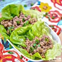 Keto Asian Lettuce Wraps